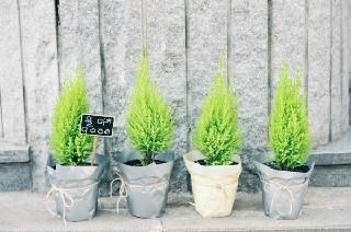 2020年四川卫生学校就业前景好吗